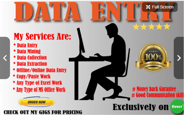 Do all kinds of data entries and virtual assistant
