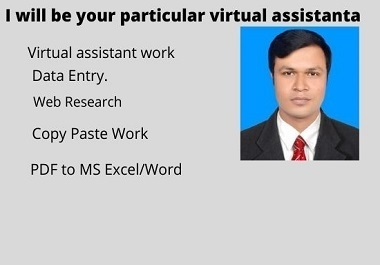I will be your particular virtual assistant