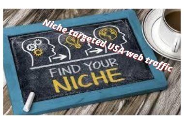 niche targeted USA website traffic