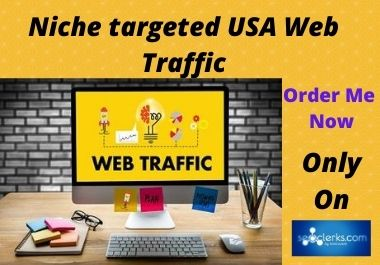 I will collect Niche targeted USA web Traffic for you