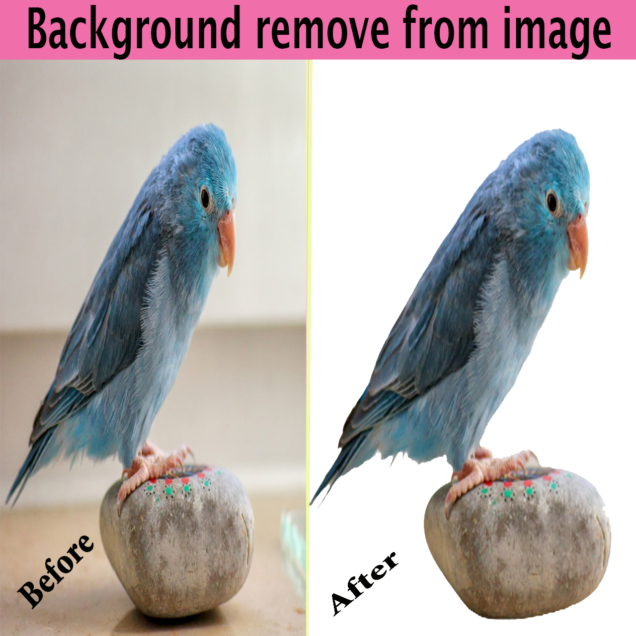 Provide background remove from images