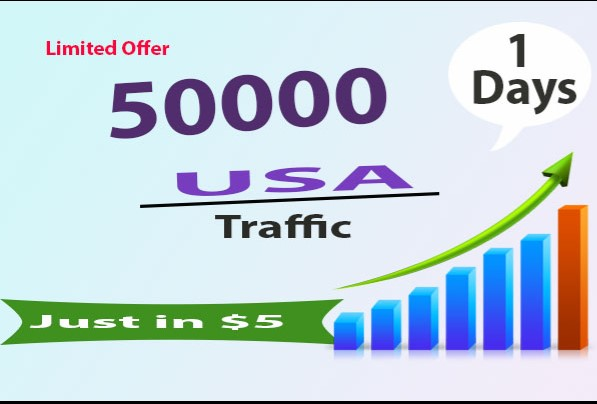 Give 50000 High Quality USA website Traffic Within 5 Day
