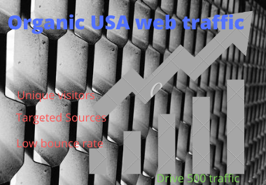 I will drive the organic USA targeted web traffic for you