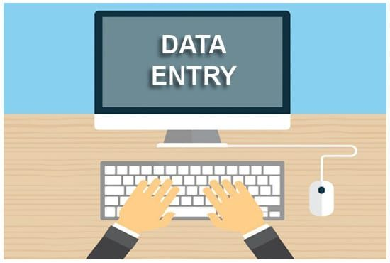 I am a 100 perfect Data-entry person for your Data work