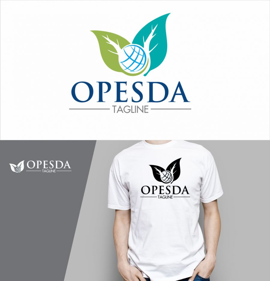 I will design or redesign your logo