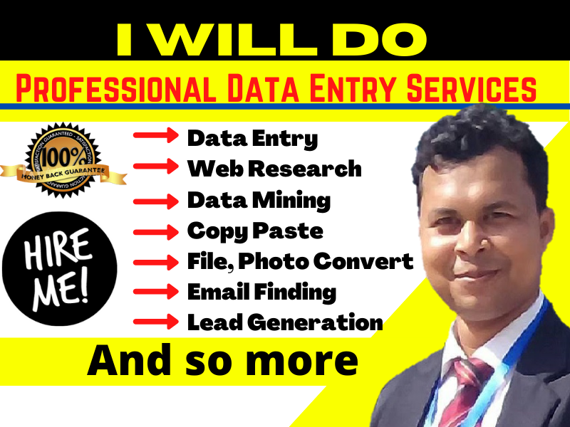I will do data entry web research copy past data mining scraping