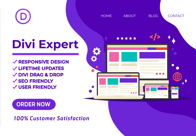 I will be your wordpress divi theme expert and do divi customization