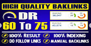 I will make 10 PBN High dr 60 to 75 plus homepage pbn dofollow backlink