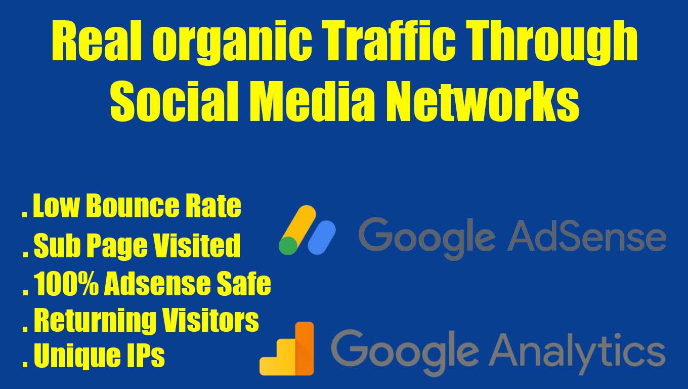 Real organic traffic through social network 200+ daily for 15 days
