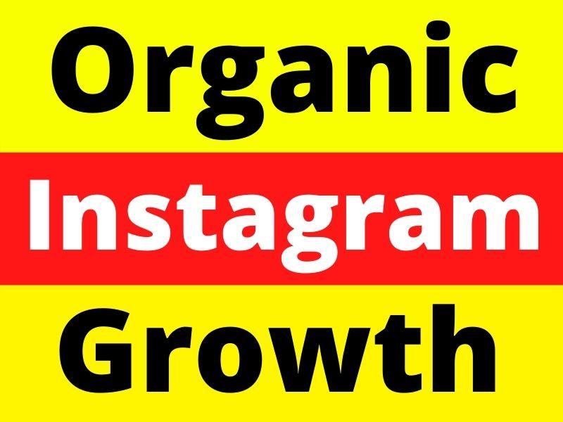 Drive human organic traffic growth instagram