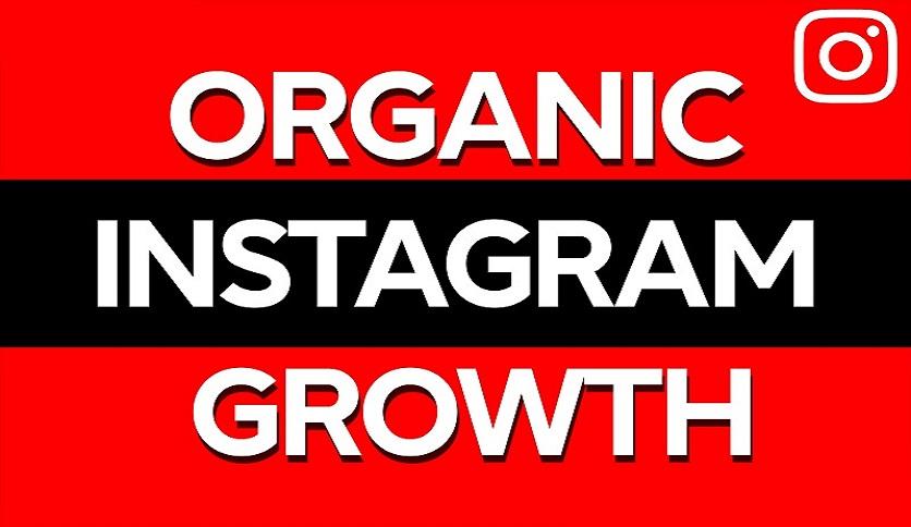 I will Drive human traffic organic instagram growth