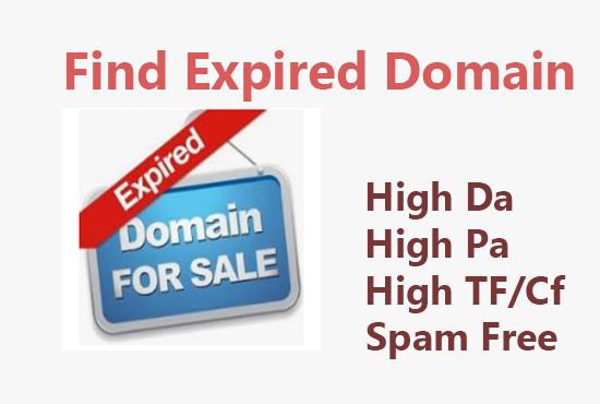 I Will Provide A Niche Relevant Expired Domain with High DA