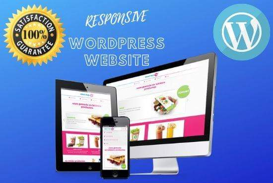 i will design and redesign wordpress responsive website