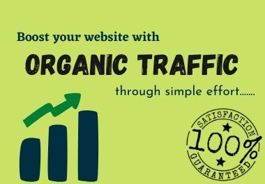 I will drive Keyword Targeted Organic Google Web Traffic to your website.