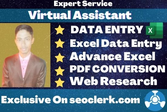 I will be your professional virtual assistant for excel data entry job