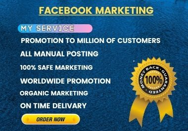 I will do social media marketing and promotion for your business