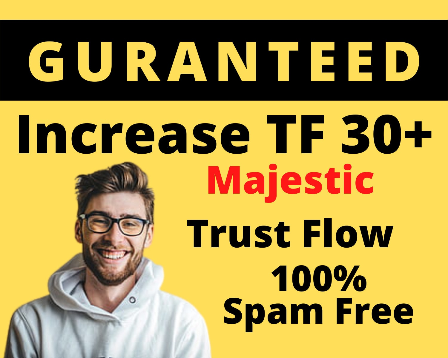 I'll increase majestic TF CF 20+ guaranteed