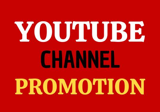 I Will Do Guaranteed Manually YouTube Video And Real Social Marketing Promotion