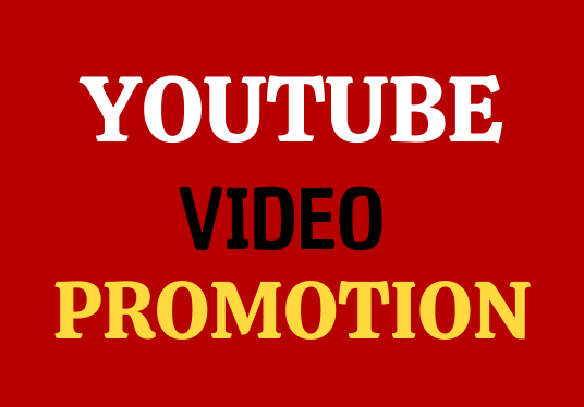 Super Fast And Real Active User YouTube Video Social Promotion
