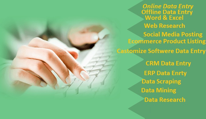 I will do Data Entry,  Internet Research,  Data Analysis,  Copy Paste and Finding data from Website