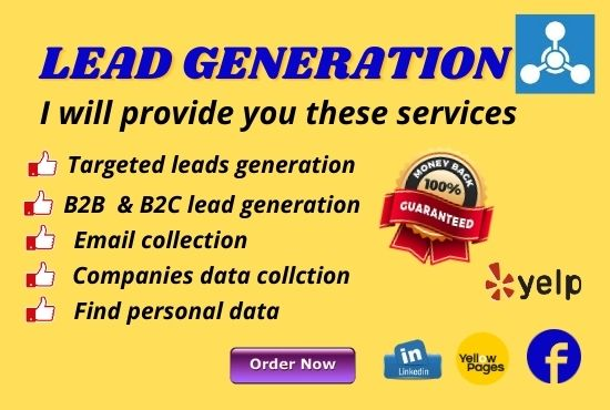 I will provide 100 LinkedIn Lead generation and B2B/B2C leads