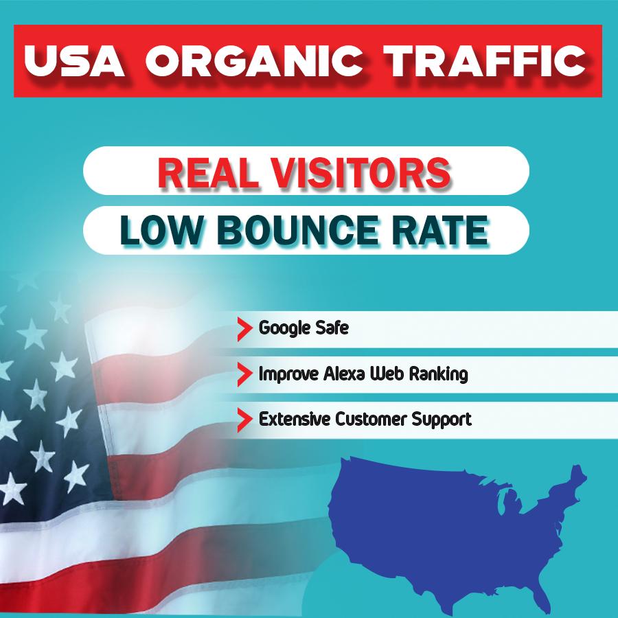 I will provide USA real traffic 1000 vistors