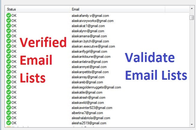 I will collect 1000 niche targeted email list, active email list