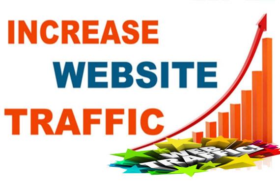 20,000 Worldwide Traffic Visitors