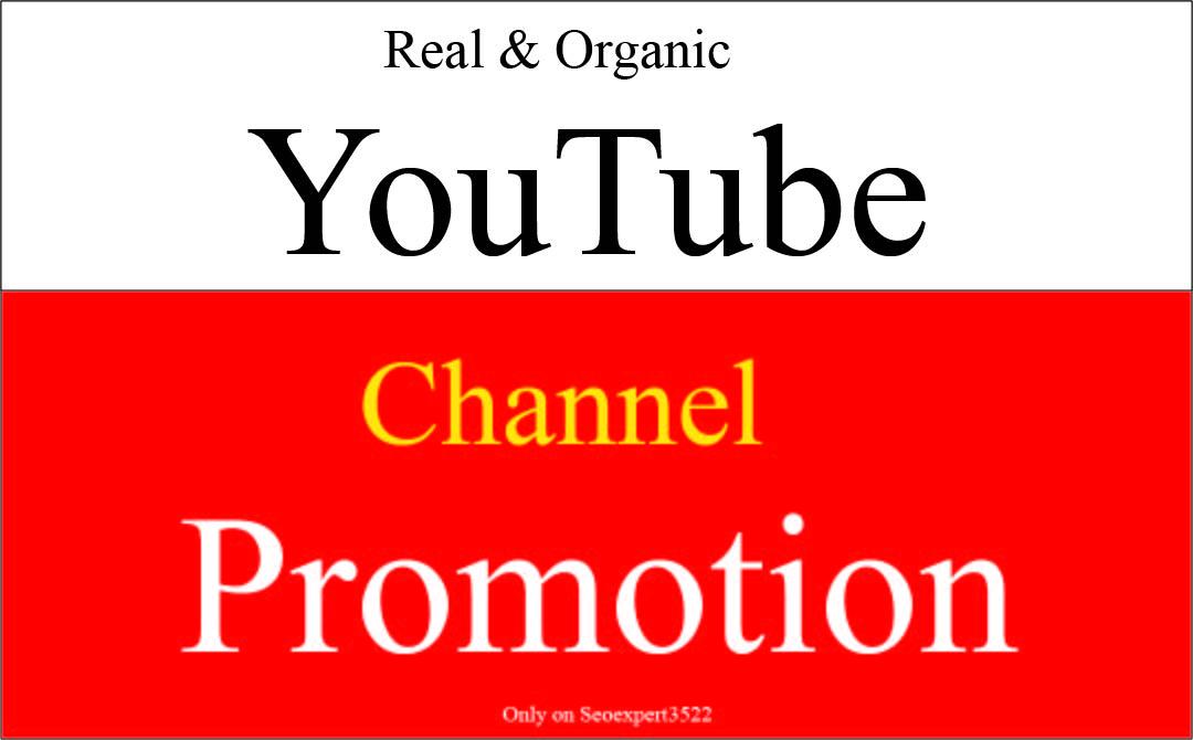 I will do super fast organic youtube vidoe promotion by social media marketing