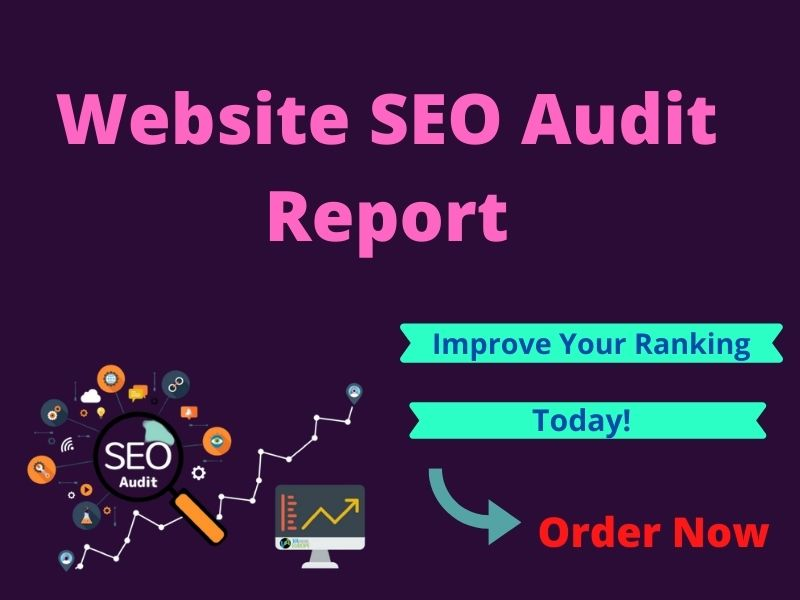 I will provide expert SEO audit report for your website