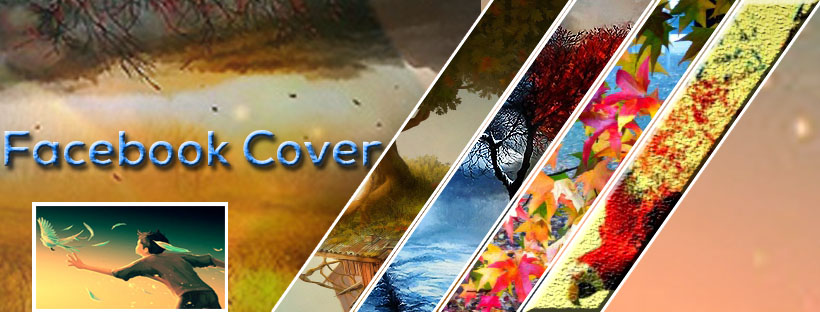 I will 3 create an amazing Facebook cover page