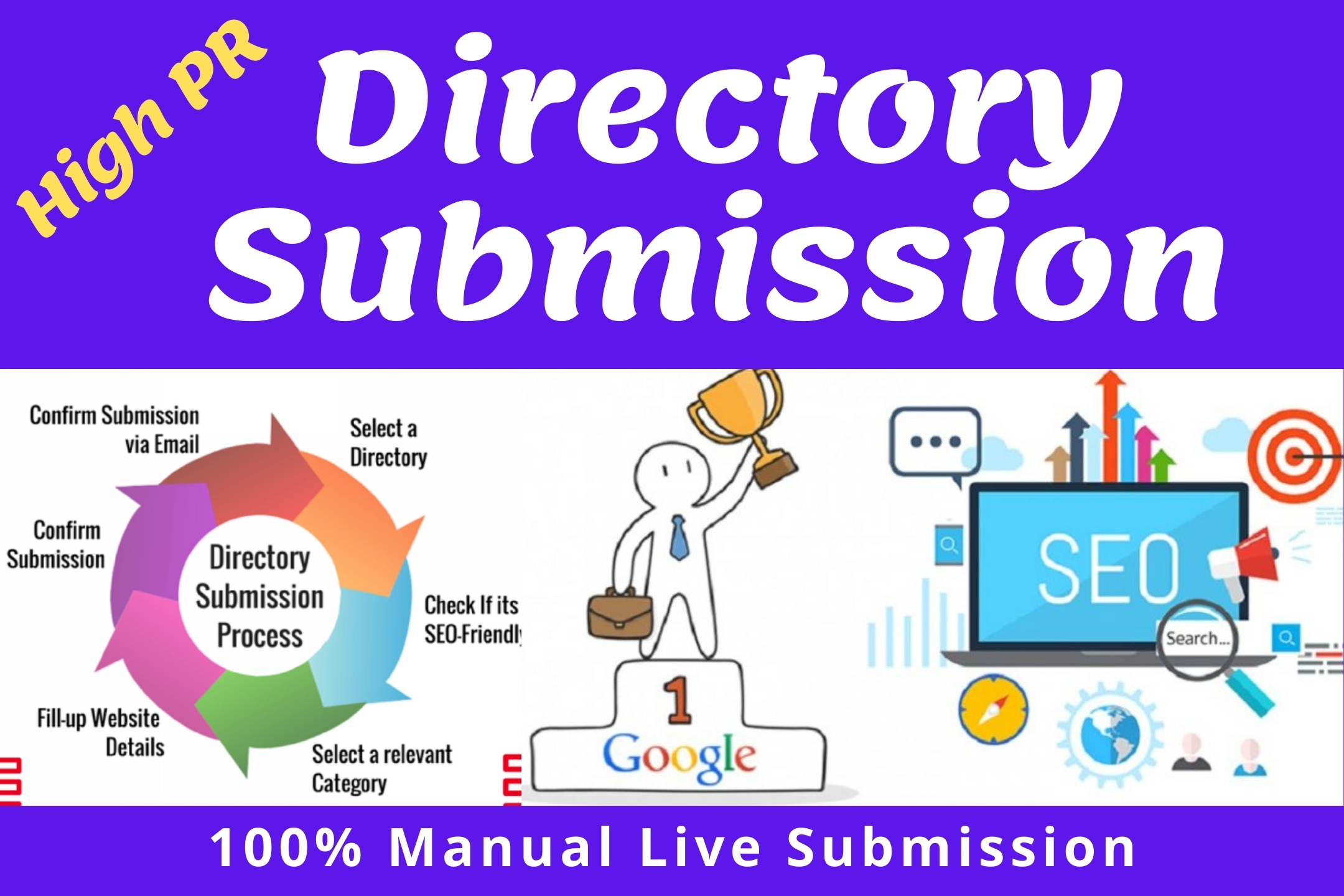 I will provide High PR 100 live directory submissions for Local SEO