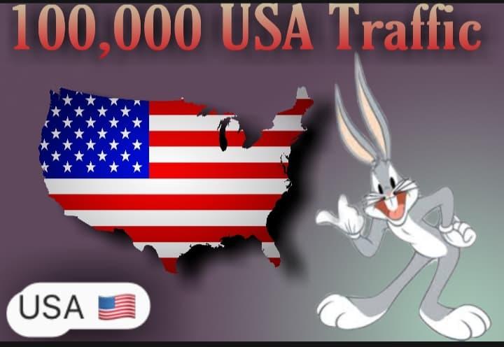i will send 100,000 USA Target Traffic
