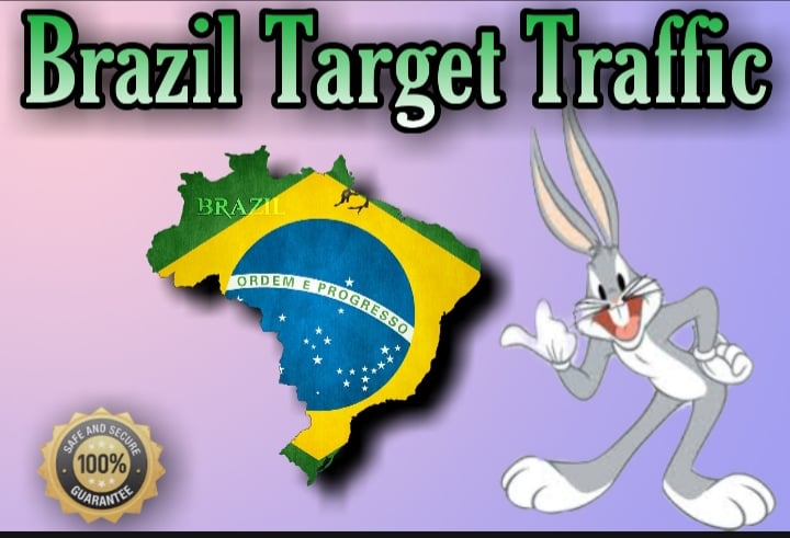 1600 BRAZIL TARGETED traffic to your website or blog-trackable on Google Analytics