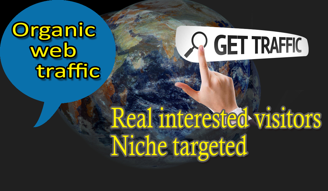I Will Send 500 Traffic On Your Website In Two Days
