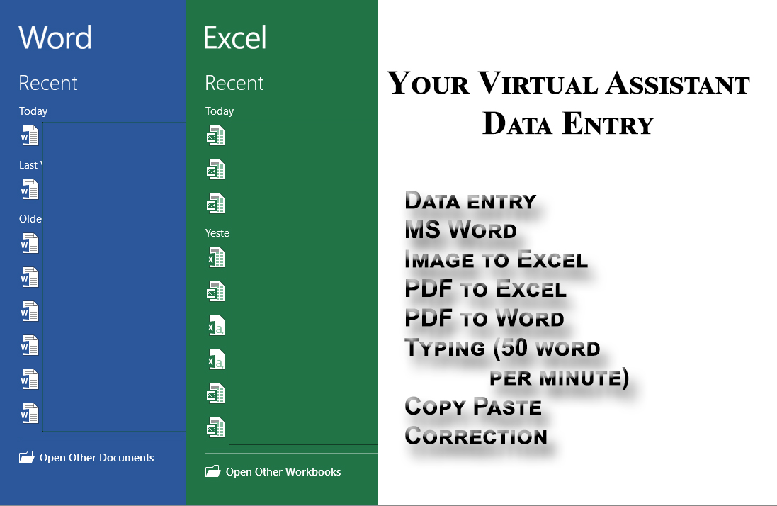 I will be your Virtual assistant of data entry for 8 hours work