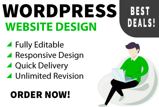 I will develop responsive wordpress website design