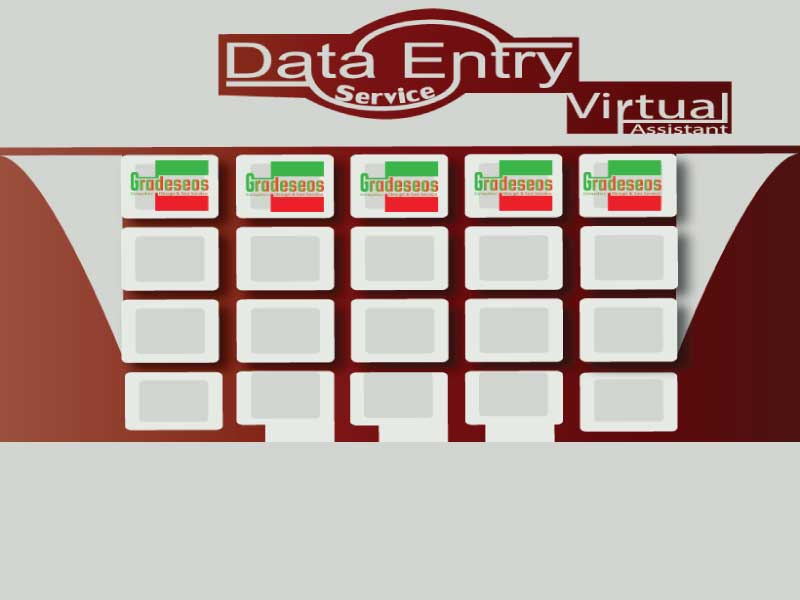 I will deliver Data Entry & Virtual Assistant Service for running your Busniess smoothly