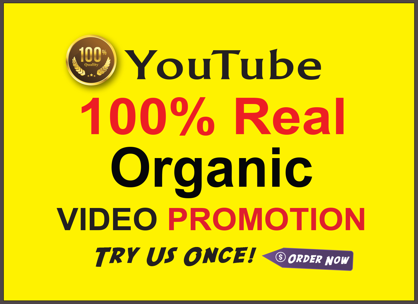 I Provide Real & Organic Youtube Video Promotion