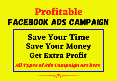 I will run profitable facebook ads campaign