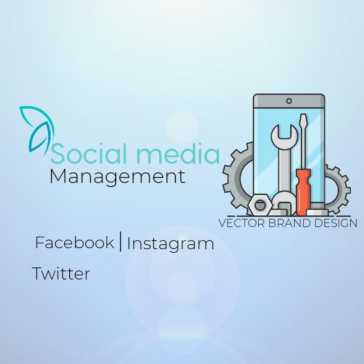 I will design a social media management