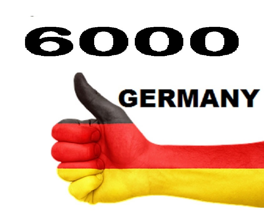 I will drive fast 6000 targeted germany real visits traffic with extras
