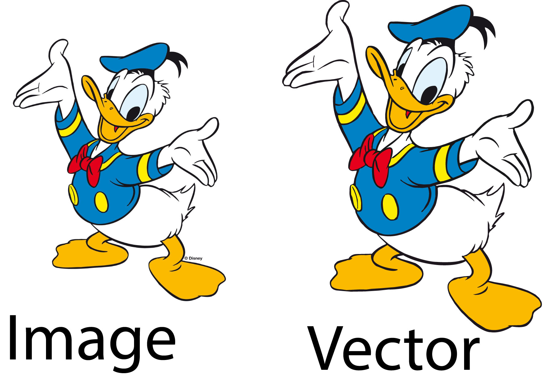 I will create your logo or image to vector professionally