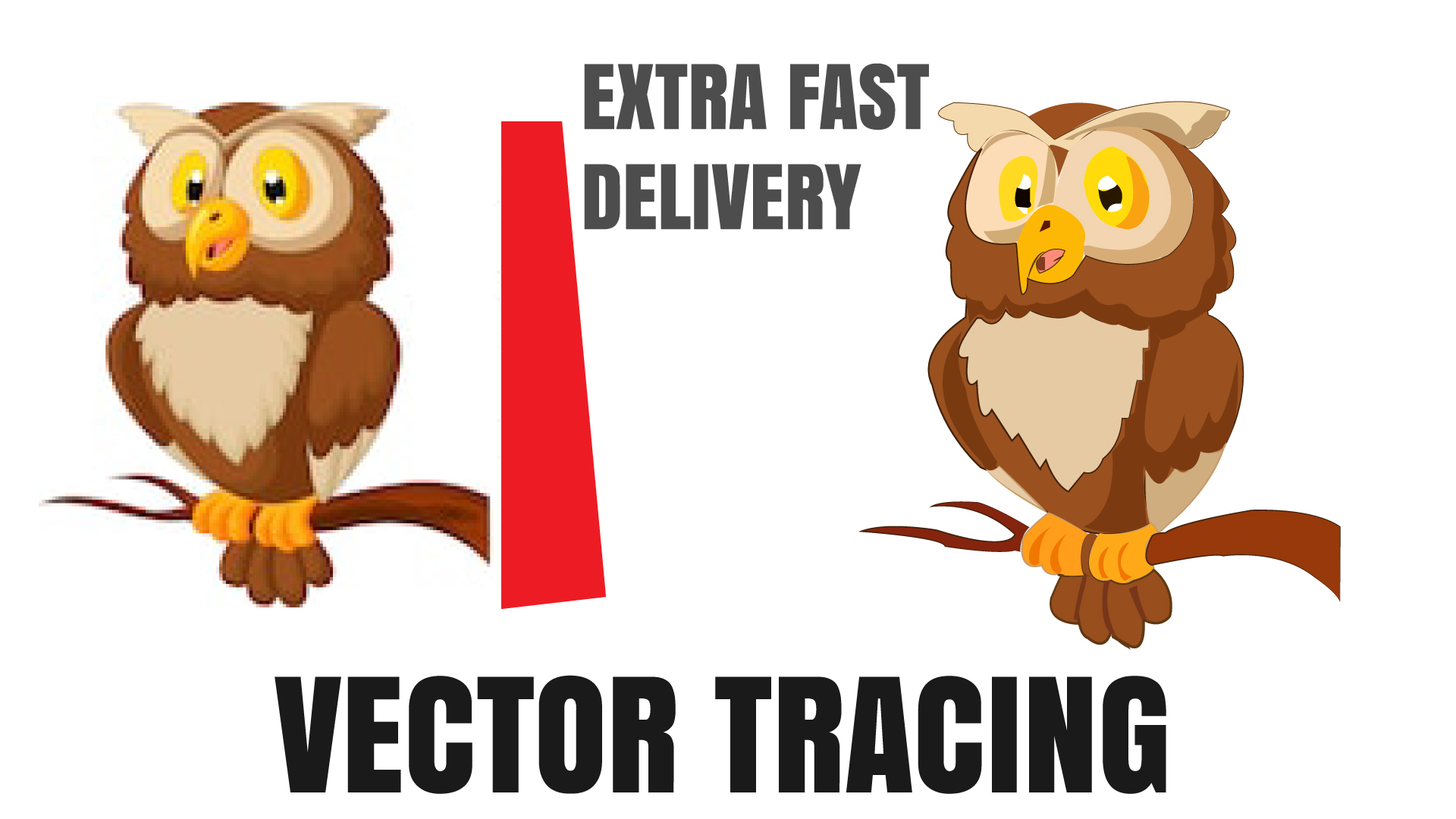 I will vectorize tracing redraw convert file logo artwork sketch image to vector ai