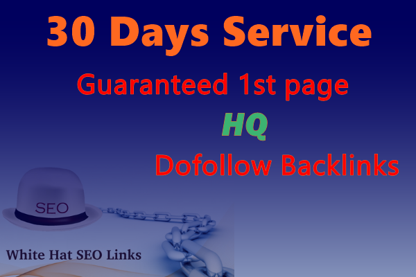 I will build a perfect monthly SEO dofollow backlinks with white hat SEO