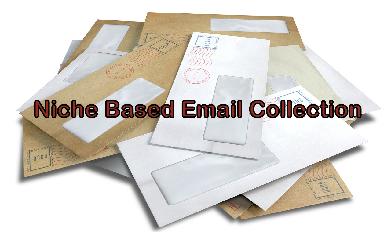 I will collect 8000 Bulk emails for your Business
