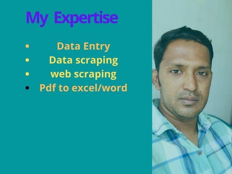 I will do online offline data entry job