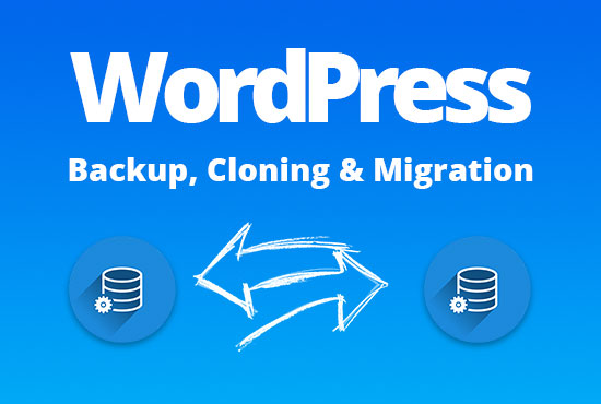 I will migrate or backup your website