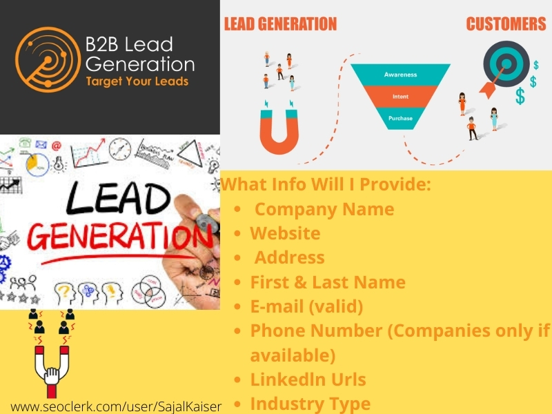I will provide 500 B2b lead generation and targeted email list