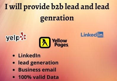 I will be provide b2b leads and lead generation